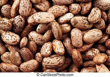 Pinto Beans Extreme Macro - An extreme macro image of pinto...