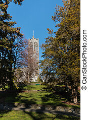 neo-gothic cathedral in Nelson - neo-gothic cathedral with...