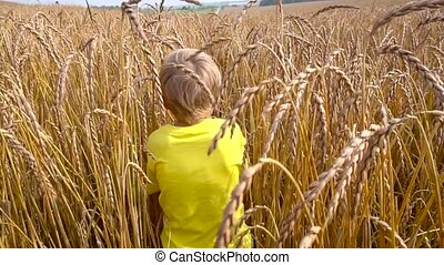 little boy playing in wheat field