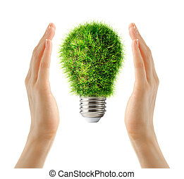 Lamp bulb made of green grass in hands - Lamp bulb made of...