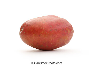 One fresh whole potato on white background