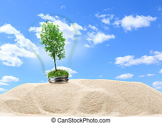 Green ash tree inside lamp in sand on blue sky background
