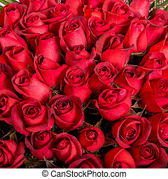 Natural red roses background - Natural fresh red roses...