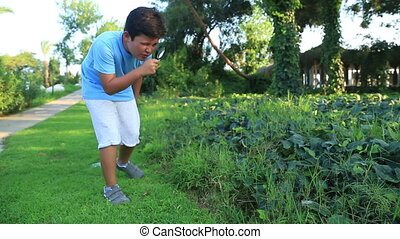 Child exploring nature - Cute child playing on green meadow...