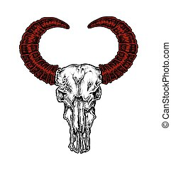 Hand drawn dot work tattoo style buffalo skull with red...