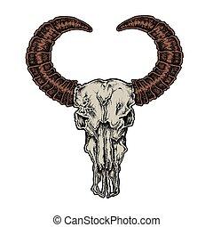 Hand drawn dot work tattoo style buffalo skull Native...