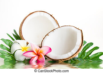 Coconut with leaves and flower on a white background