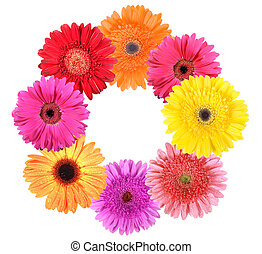 Frame as ring of flowers. Isolated on white background....