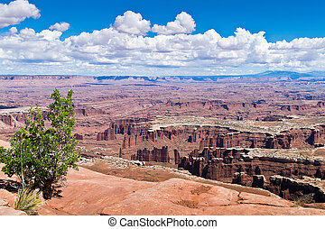 Canyonlands National Park in Utah, North America