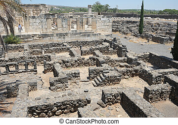Excavations of the ancient city of Capernaum on the shores...