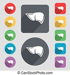 Liver icon sign. A set of 12 colored buttons and a long...