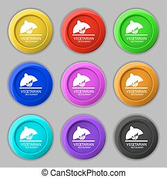 vegetarian restaurant icon sign. symbol on nine round colourful buttons. Vector