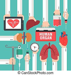 Human organ for transplantation