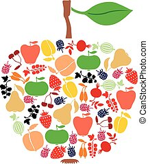 Apple of fruits and berries - Vector illustrations of apple...