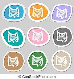 Intestines symbols. Multicolored paper stickers. Vector...
