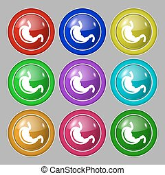 Stomach icon sign symbol on nine round colourful buttons...