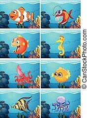 Different sea animals in the sea