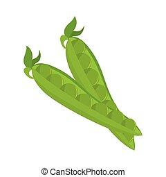 pea pod vegetable - pea vegetable pod plant food nutrition...