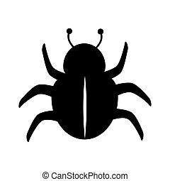 bettle scarab insect - bug scarab beetle insect animal...