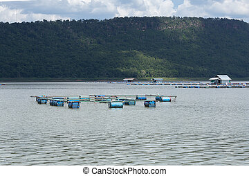 coop for feeding fish in river of Thailand - the coop for...