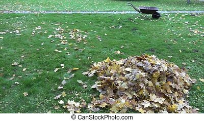Pile of dry colorful leaves and empty barrow cart on autumn park grass. 4K