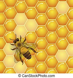 Vector bee and honeycombs texture background. For honey...