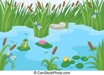 Pond - Illustration of a pond with a frog