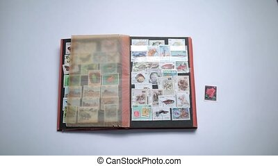 Woman looking through old stamps collection - Close up of...