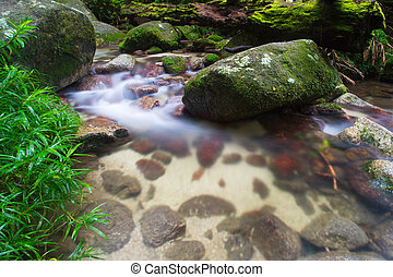 Mossman Gorge Scenery - A typical water and rocks scene in...