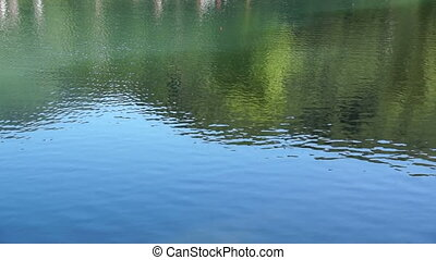 Beautiful views of forest lake with reflection of green trees and grass.