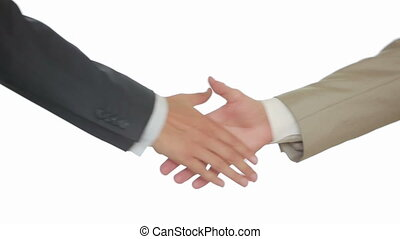 A Business Handshake with White Background, Two men shake hands