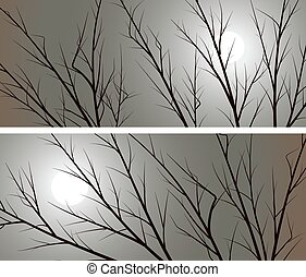 Branches of trees against the moon. - Set of horizontal...
