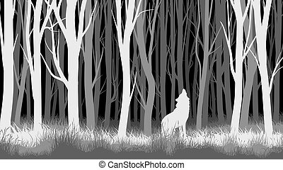 Night forest with wolf. - Abstract vector horizontal...