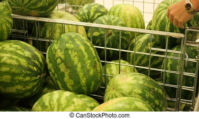 the selection and purchase watermelon in the store - the...
