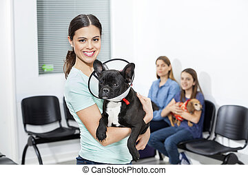 Happy Woman Holding French Bulldog With Cone In Clinic -...