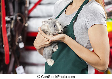 Saleswoman Holding Rabbit At Store - Midsection of...
