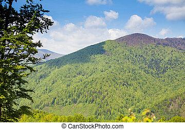 Wonderful scenery of green moutain - Breathtaking scenery of...