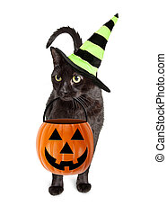 Black Cat Halloween Witch - Cute black cat wearing witch hat...