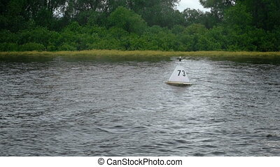 White buoy floating in the river next to shore in summer...