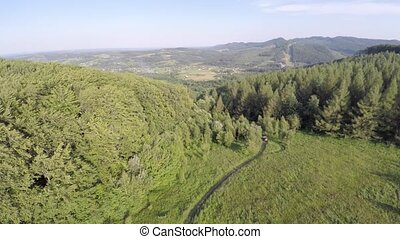 The mountain with road ridge covered with forest. Mountain landscape.