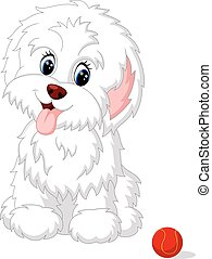 Cute white lap-dog puppy posing - illustration of Cute white...