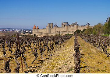 Castle of Carcassonne and vineyard, France - Castle of...