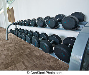 Different sizes and weights dumbbells on stand in modern gym
