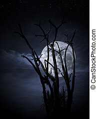 Full moon and tree - Tree with full moon arising from...