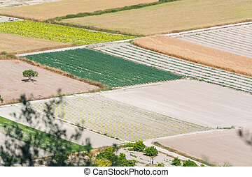 Agricultural land in Mallorca, Spain - Bird perspective in...