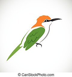 Vector of bird on white background Green Bee-eater