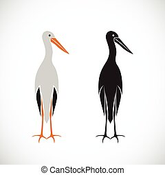 Vector of stork design on white background.