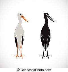 Vector of stork design on white background