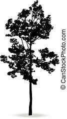 Beautiful vector tree silhouette