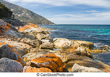 Freycinet Beach Landscape - A beach in a remote part of the...